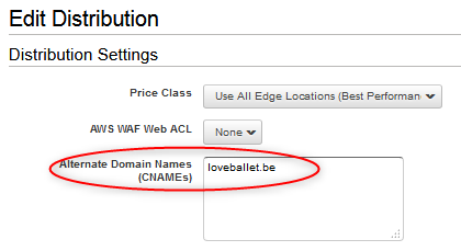 "「Alternate Domain Names」に""loveballet.be""を入力する"